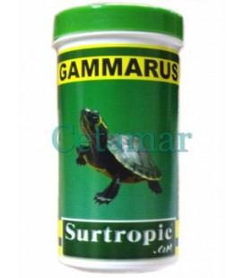 Gammarus (250 o 1200 ml), Surtropic
