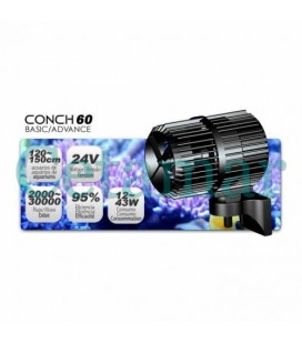 Bomba wave maker Conch 60 basic