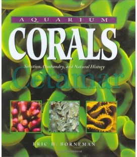 Los-corales-del-acuario-de-Eric-Borneman