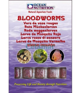 Bloodworms, Ocean Nutrition