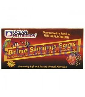 Brine Shrimp Eggs 50g, Ocean Nutrition
