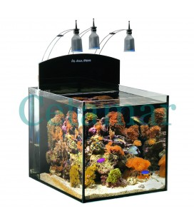 Aqua Medic Blenny Nano Reef acuario (80 litros)