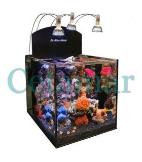 Aqua medic Yasha Nano Reef acuario